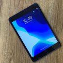 iPad Mini2 4