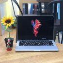 MGX72 MacBook Pro Retina 13 inchi